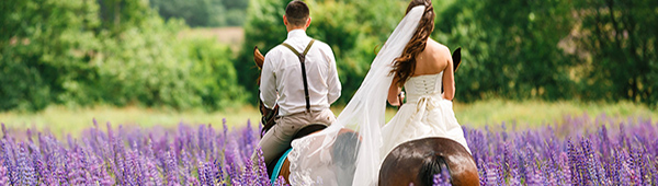 Newlyweds riding horses in a field