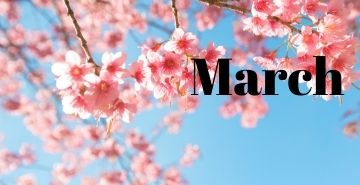 cherry blossom tree with the word March